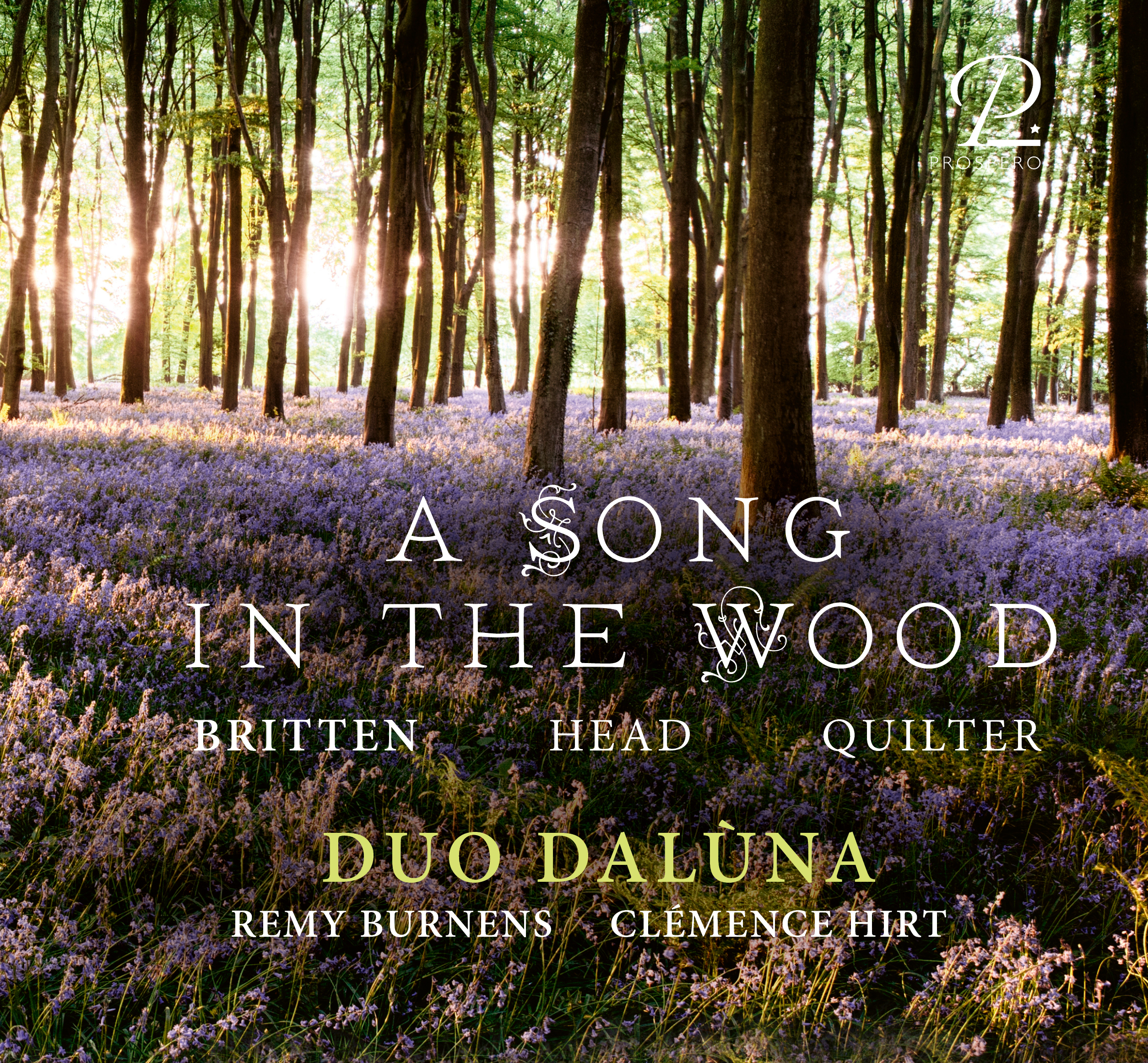 A Song in the Wood - Cover Art